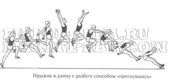 Реферат на тему техника прыжка с разбега 7490